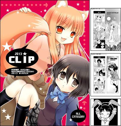 CLIP 2013